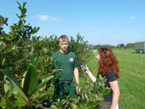 Ine Dippmann von MDR Info im Gepräch mit Obstbauer Michael Görnitz. Hier am Elberadweg befindet sich Deutschlands größte Aronia-Plantage.