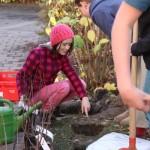 Schüler pflanzen Aronia-Sträucher an der Montessorischule Dresden