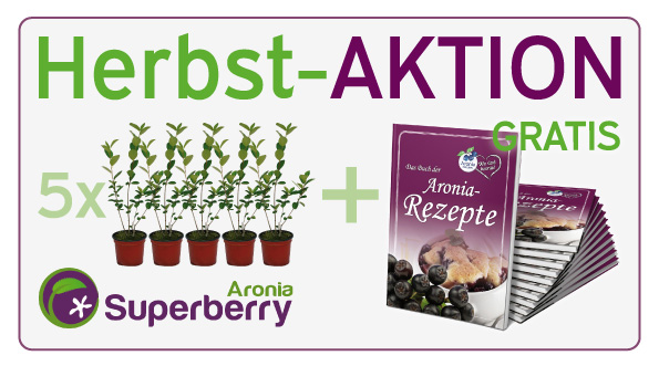 Aronia Herbst-Aktion Superberry 2014