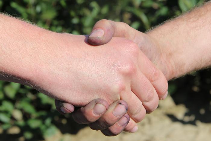 Seitenfoto: Hand in Hand mit allen Partnern