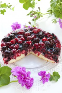 Rezeptbild: Aronia-Erdbeer-Kuchen